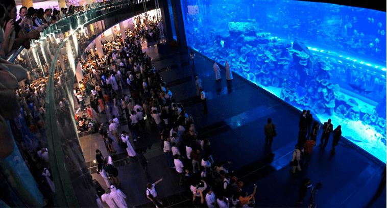 aquariums in malls